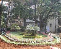Walawalkar_Hospital_Campus_4